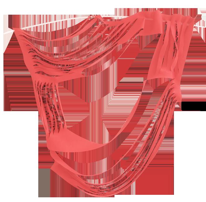 2018 — 3ème VIE
