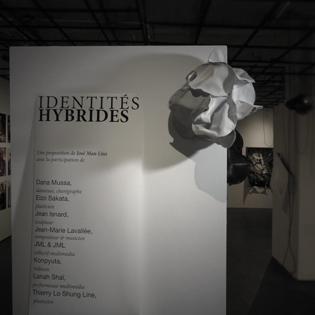 2021. Épiphytes, sculptures de cuir